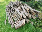 Brennholz Haselnuss