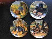 Porzellanteller Sammelteller Wandteller - Bradex-Serie Heitere