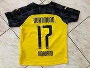 Halland Trikot Borussia Dortmund Gr