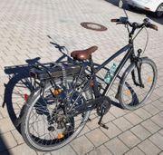 E-Bike Herren-Fahrrad