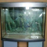 AquaArt Evolution Line Aquarium mit