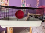 Hamsterkäfig neu