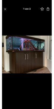 Aquarium Eheim Vivaline 330