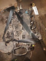 Motor Ford Fiesta 1 3
