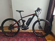 Fully E-Bike Bosch Mittelmotor 27