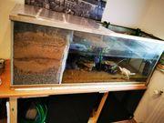 Aquarium inkl Unterschrank