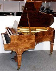 Flügel Klavier Ibach 180 Wurzelnußbaum