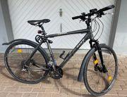 Herren Fahrrad Trekking Rixe Cross
