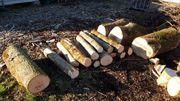 Meterabschnitte Stammholz hart gemischt Brennholz