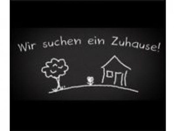 Bregenzerwälderin Buchhalterin sucht Wohnung