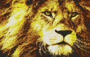 Vorlage für Ministeck Lion1 80x60cm