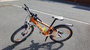 Bulls Mountainbike 24 Zoll Top