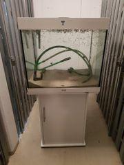Juwel Aquarium 240L Komplett Set