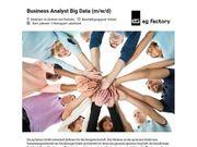 Business Analyst Big Data m