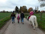 Erlebnis Pferd für die Kleinsten