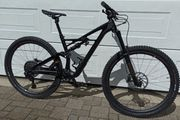 SPECIALIZED S-Works Enduro 29 Carbon