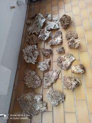 Meerwasser Steine Totgestein 100kg