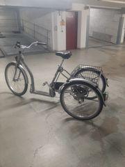 Ein Dreirad