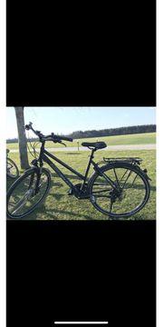 ktm Avenza Disc 51 Fahrrad