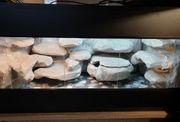 Terrarium 100x50x50 cm