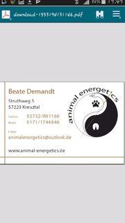 Chinesische Tiermedizin
