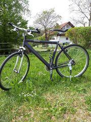 Cross-Bike von CRESTA Top gepflegter