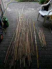 82 Bambusstäbe - Bambusstangen 1-4 Meter