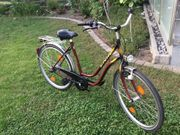 Danen Fahrrad von Enik mit