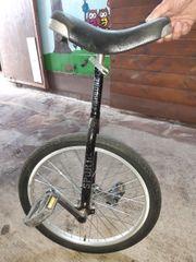 Einrad von Fishbone Sport
