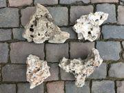 Aquariumsteine oder Terariumsteine Lochsteine Zubehör