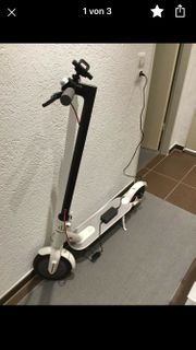 Eleganter E-Scooter Roller mit Versicherung