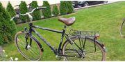 Triumph Herrenrad