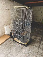 Nagervoliere für Ratten Degus Hasen