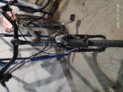 Fahrrad Bavaria Ammersee Nabendynamo