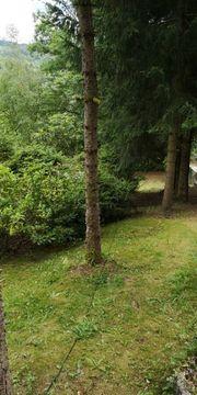Privatgarten zu verpachten auch ein