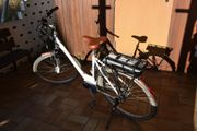 E-Bike SINUS CB2 Einrohr 400
