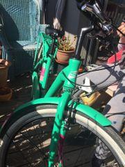Grünes hochwertiges Fahrrad - noch 1