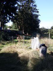 Eingezäuntes Gartengrundstück in 63225 Langen