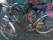 3 Fahrräder 2 Damenräder und
