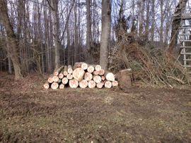Holz - Brennholz incl Lieferung