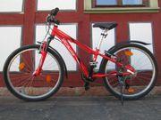 Mountenbike Fahrrad Kinder 24 Specialized