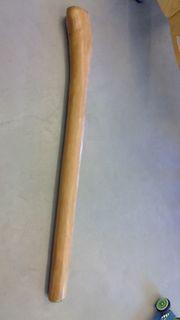 Didgeridoo Eukalyptus aus Australien