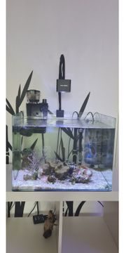 Meerwasser Aquarium komplett Set