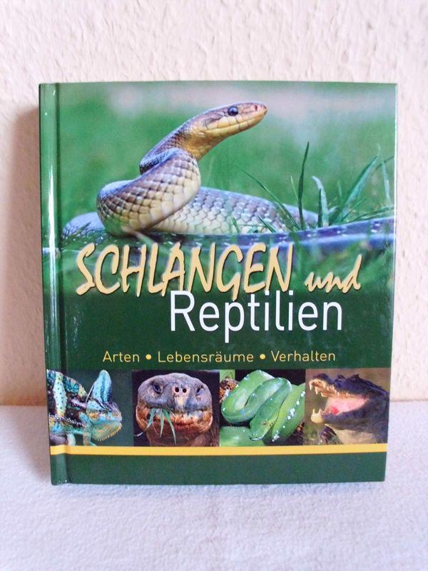 Schlangen und Reptilien