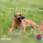 Mia Aya - Möchte sich räumlich