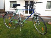 Herren Trekking-Bike Active 28 12