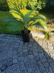Künstliche Pflanze Farn mit Topf