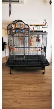 Vogelkäfig Papageienkäfig käfig Voliere