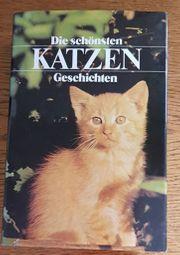 Die schönsten Katzen Geschichten