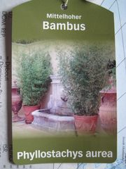 Pflanzen In Pulheim Günstig Kaufen Quokade